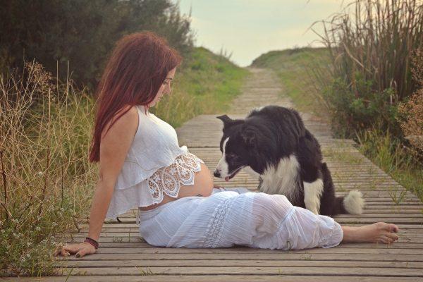 Mi perro durante el embarazo